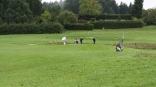 Golf Landes-Mannschaftsmeisterschaft der SchulenJG_UPLOAD_IMAGENAME_SEPARATOR9